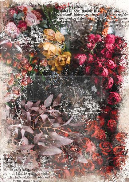 """Prima Marketing Re-Design Mulberry Tissue 19""""x30"""" Iva"""