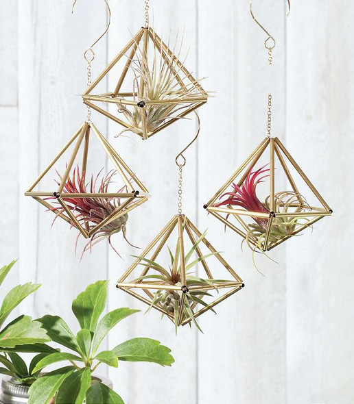 Himmeli Ornaments Kit Double pentagon