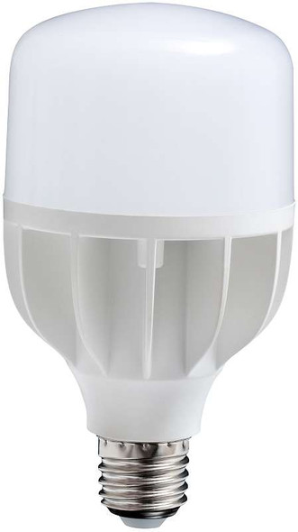 Daylight LED Replacement Bulb LED