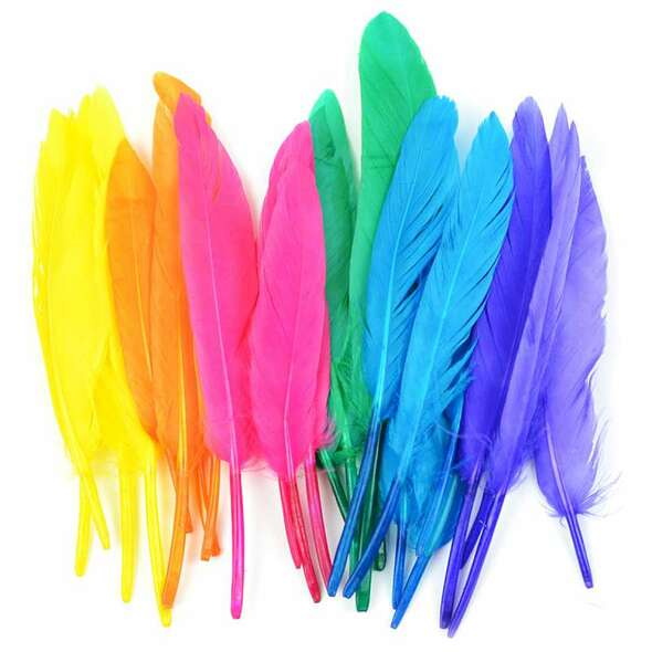 Duck Quill Feathers 24/Pkg Bright Mix