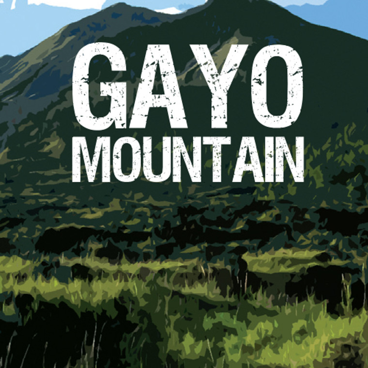 Gayo Mountain