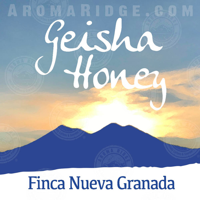 Guatemala Geisha Honey Washed Coffee- Nueva Granada Farm