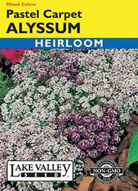 Lake Valley Alyssum Pastel Carpet Mixed Color Seed