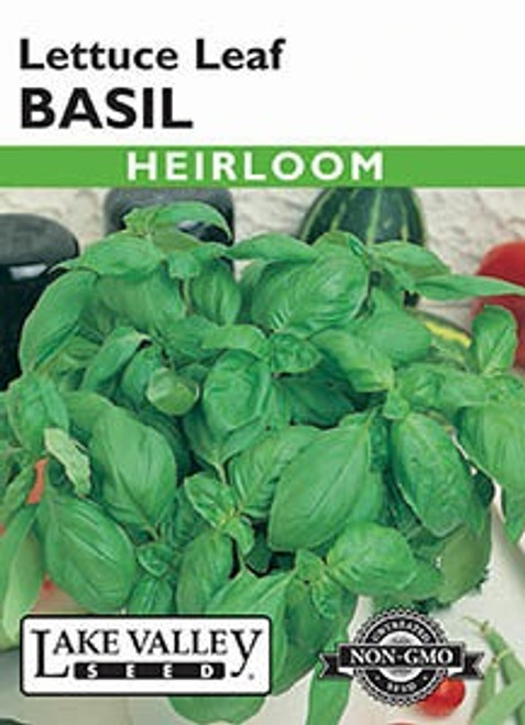 Lake Valley Basil Lettuce Leaf Seed