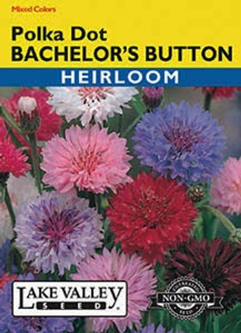 Lake Valley Bachelor's Button Polka Dot Mix Seed