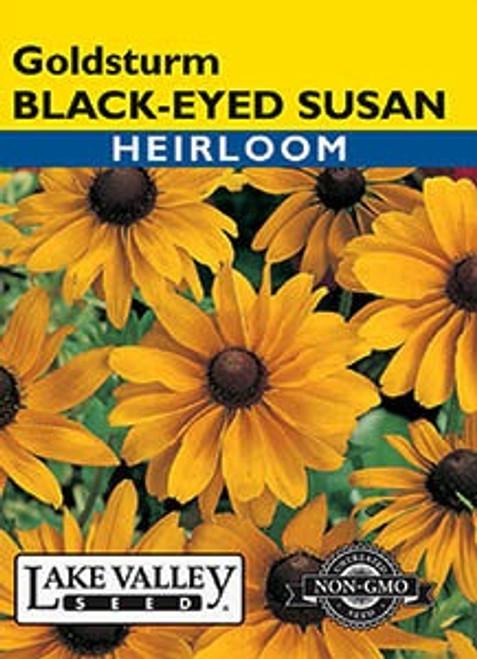 Lake Valley Black Eyed Susan Goldsturm Seed