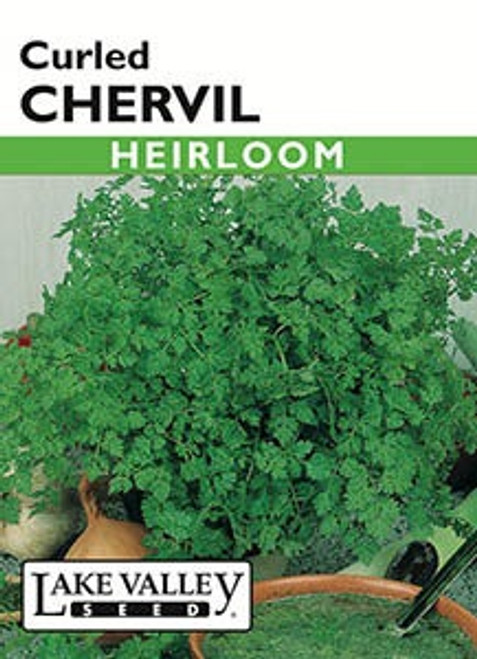 Lake Valley Chervil Curled Seed