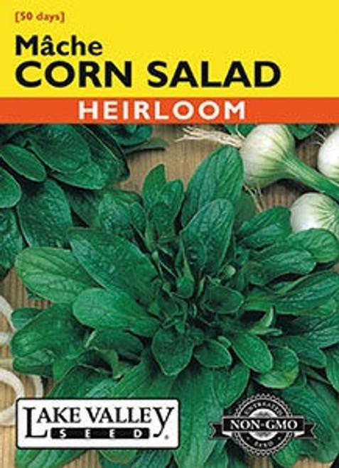 Lake Valley Corn Salad (Mache) Seed