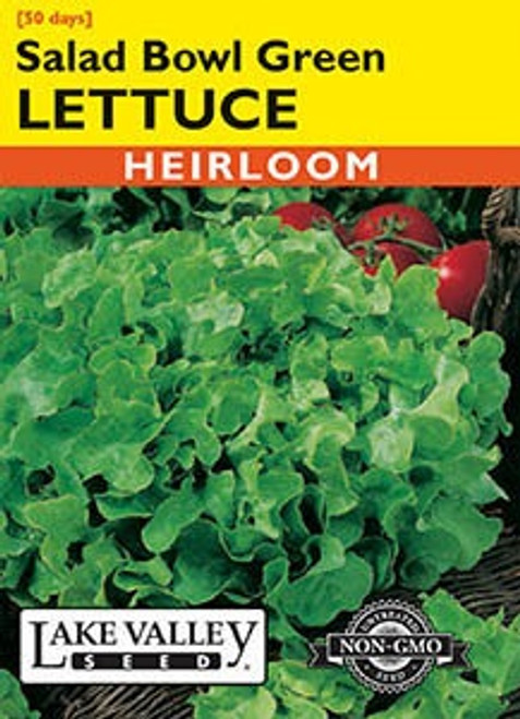 Lake Valley Lettuce Salad Bowl Green Seed