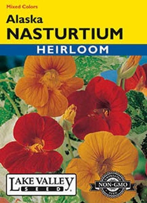 Lake Valley Nasturtium Alaska Mixed Seed