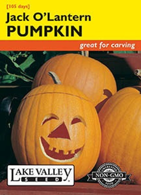 Lake Valley Pumpkin Jack O'Lantern Seed