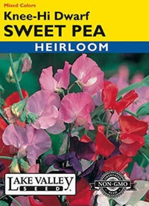 Lake Valley Sweet Pea Knee-High Dwarf Seed