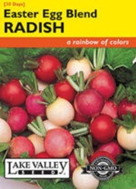 Lake Valley Radish Easter Egg Blend Seed