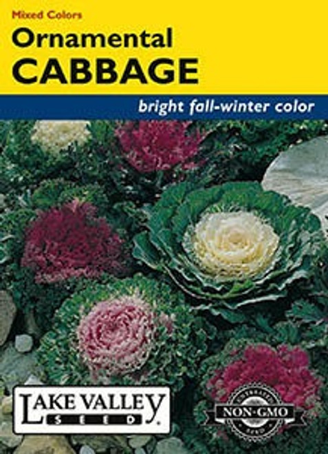 Lake Valley Cabbage (Ornamental) Mixed Colors Seed