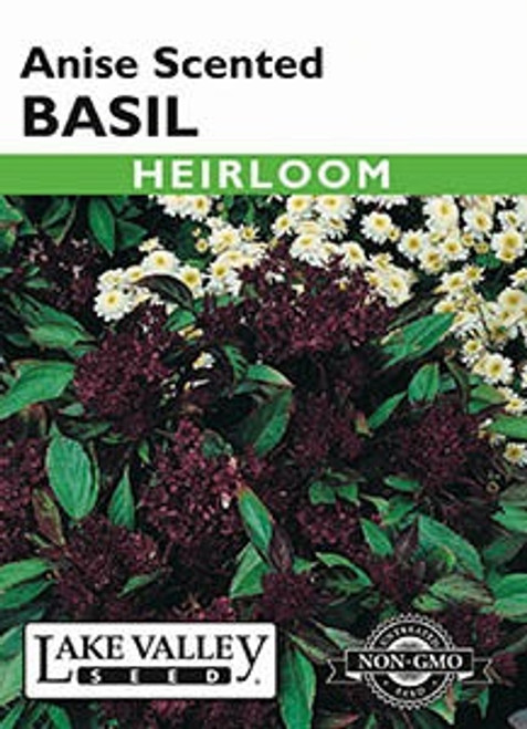 Lake Valley Basil Anise Scented Seed