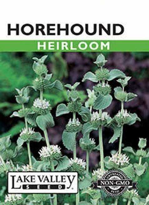 Lake Valley Horehound Seed