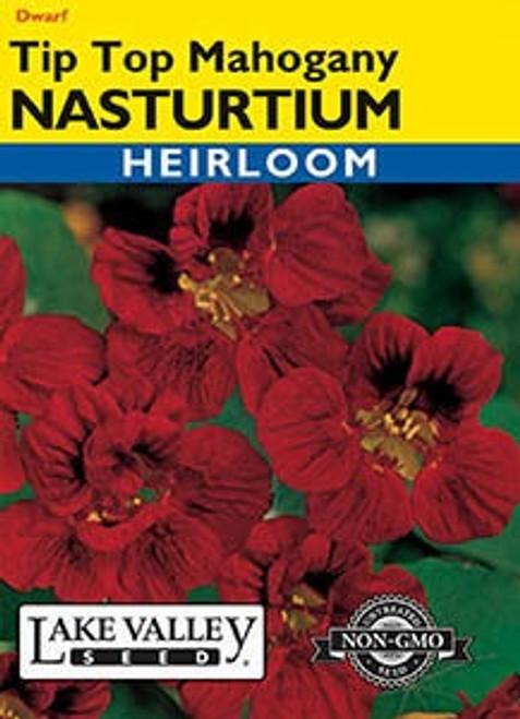 Lake Valley Nasturtium Tip Top Mahogany Seed