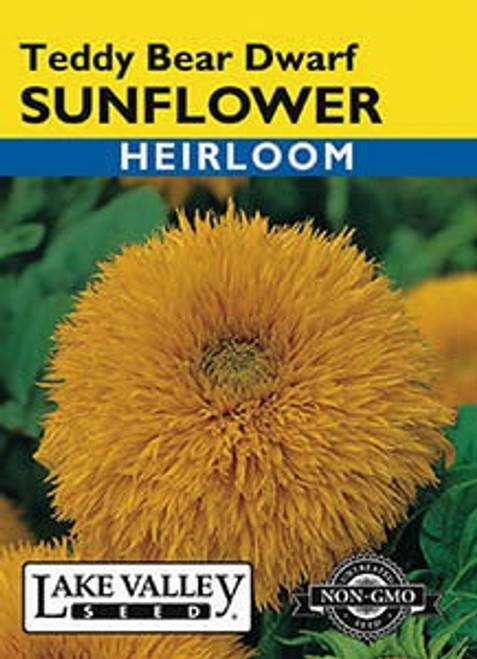 Lake Valley Sunflower Teddy Bear Dwarf Seed