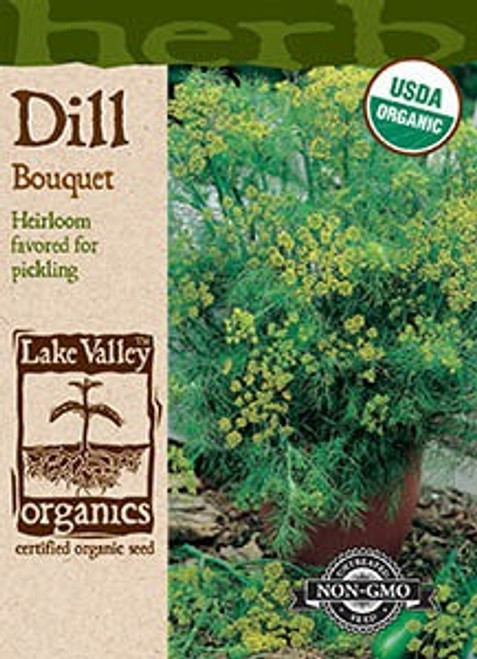 Lake Valley Dill bouquet Organic Seed