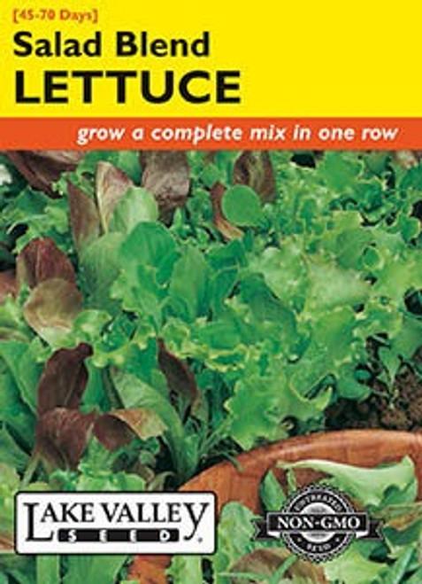 Lake Valley Lettuce Salad Blend Seed