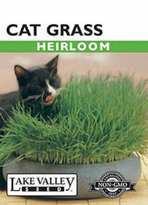 Lake Valley Cat Grass Seed