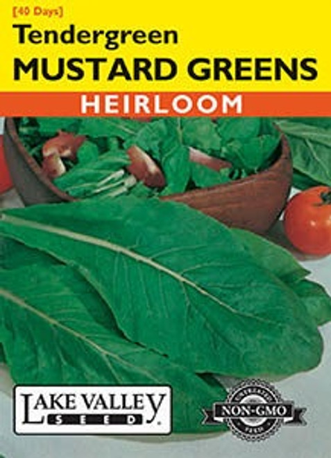 Lake Valley Mustard Greens Tendergreen Seed