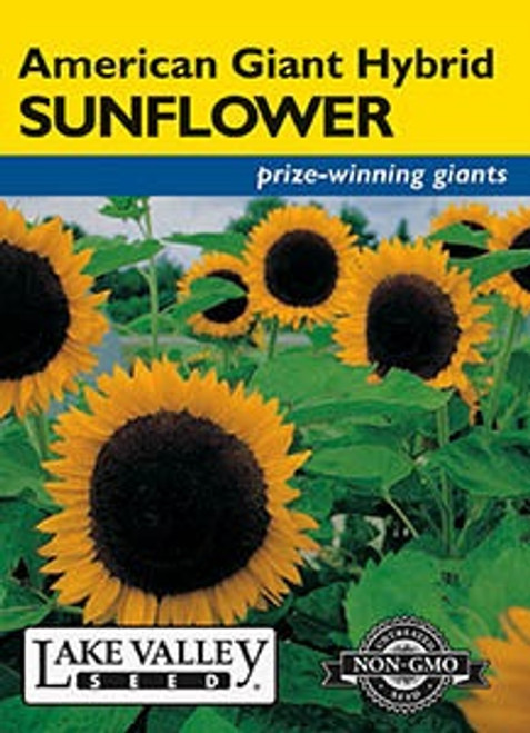 Lake Valley Sunflower American Giant Hybrid Seed