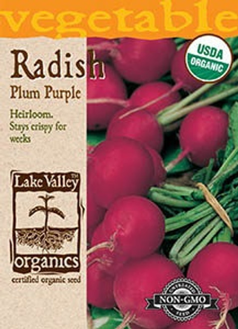Lake Valley Radish Plum Purple Organic Seed