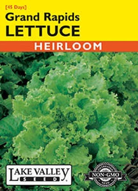 Lake Valley Lettuce Grand Rapids Seed
