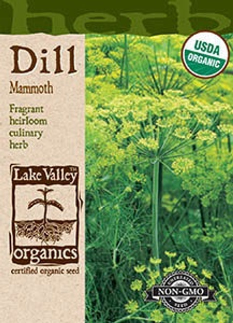 Lake Valley Dill Mammoth Organic Seed