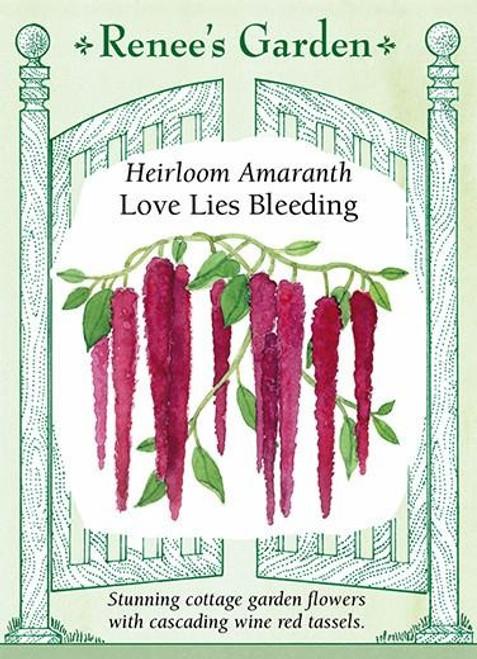 Renee's Garden ' Love Lies Bleeding' Heirloom Amaranth Seed
