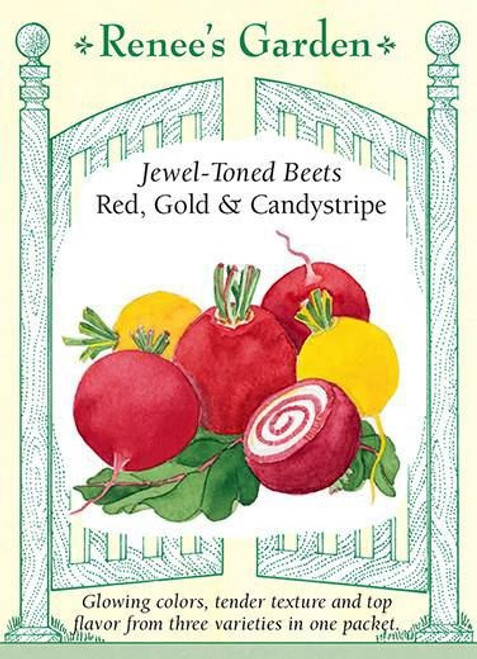 Renee's Garden 'Red, Gold & Candystripe' Jewel Toned Beets Seed