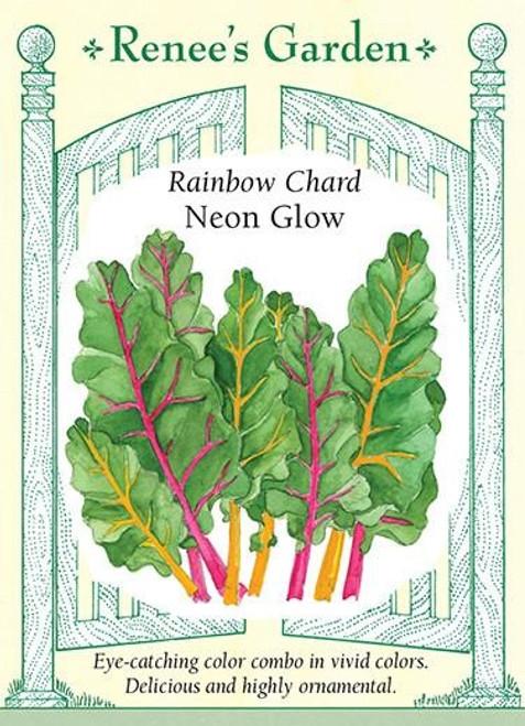 Renee's Garden 'Neon Glow' Rainbow Chard Seed