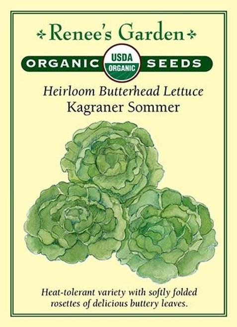 Renee's Garden ' Kagraner Sommer' Heirloom Butterhead Lettuce Organic Seed