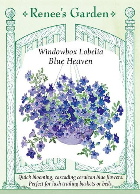 Renee's Garden 'Blue Heaven' Windowbox Lobelia Seed