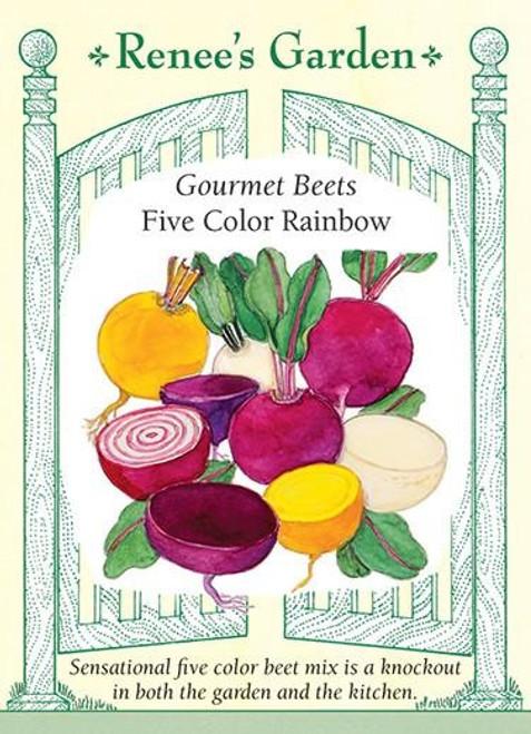 Renee's Garden 'Five Color Rainbow' Gourmet Beets Seed