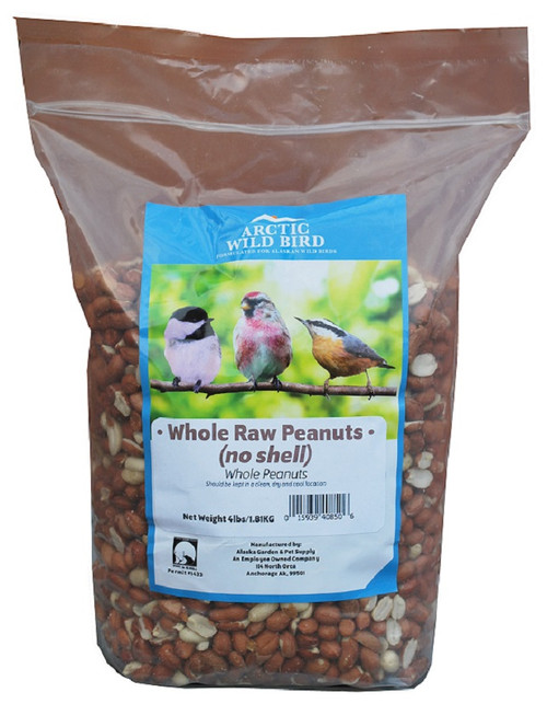 Arctic Wild Bird Raw Peanuts Out of the Shell