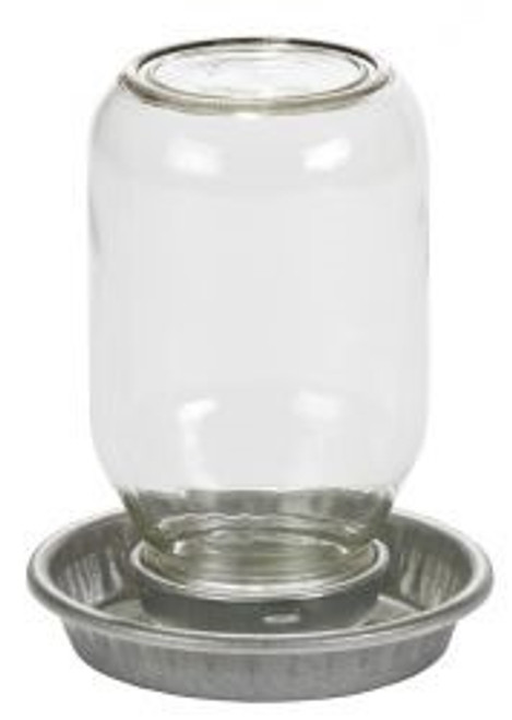 Miller Mason Jar Chick Waterer