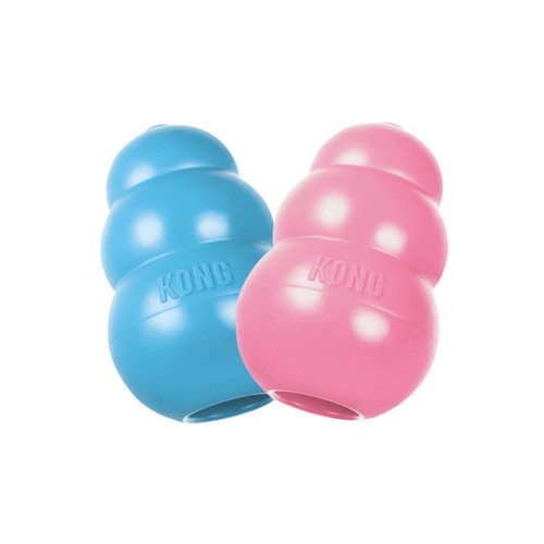 Kong Puppy Blue or Pink, Small