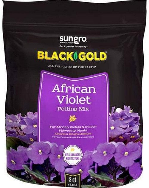 Black Gold African Violet Mix, 8qt