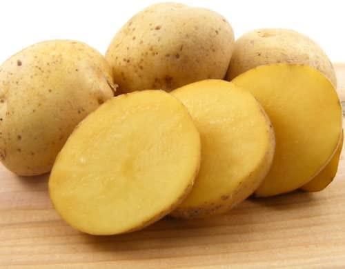 German Butterball Seed Potato, 5lb
