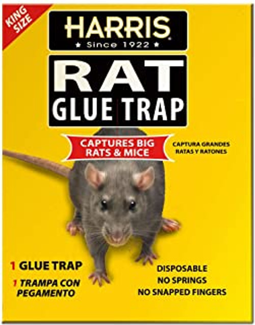 Harris Rat Glue Trap