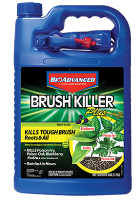 Bayer Brush Killer Plus, 1 gal