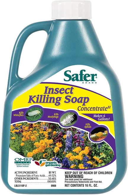 Safer Brand Insect Killing Soap Concentrate, 16oz