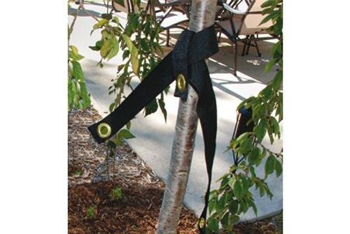 Dewitt Tree Strap, 32 inch