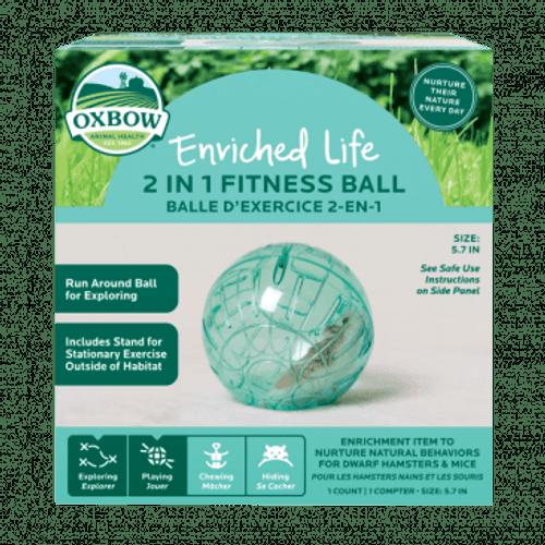 Enriched Life - Run Around Ball