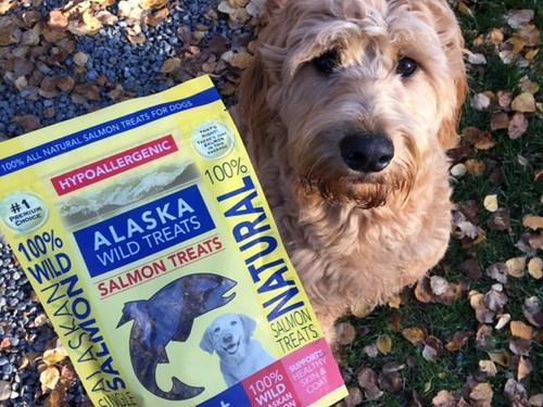 Alaska Wild Treats Salmon, 4oz