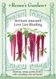 Renee's Garden ' Love Lies Bleeding' Heirloom Amaranth Seed