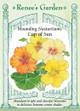 Renee's Garden 'Cup of Sun' Mounding Nasturtiums Seed
