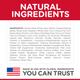 Science Diet Puppy Chicken Meal & Barley, 15.5lb